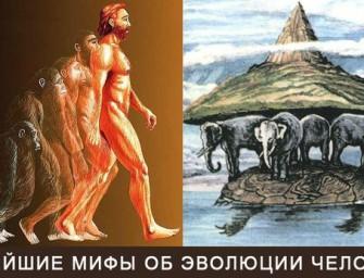 Новейшие мифы об эволюции человека