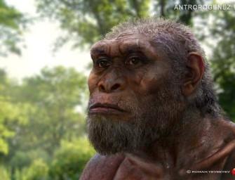 Первые Homo