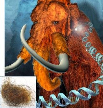 Молекулярная палеонтология