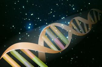 Введение в популяционную генетику