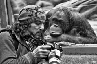 Введение в зоопсихологию
