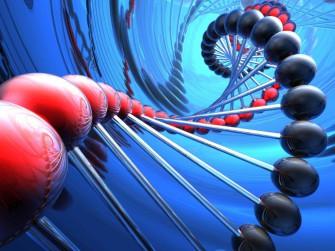 Нейтральная теория молекулярной эволюции
