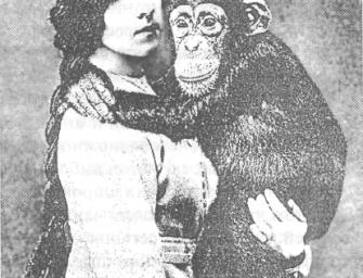 История изучения поведения и психики животных