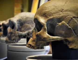 Антропология — наука о человеке