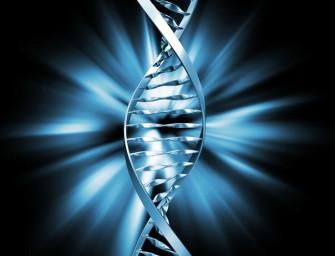 Эгоистичные гены