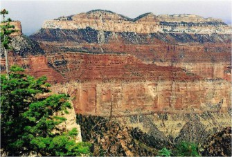 Геохронология и тектоника плит