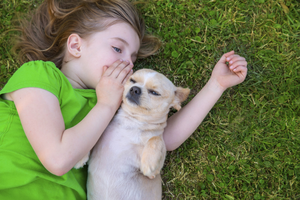 blond-happy-girl-with-her-chihuahua-doggy-portrait-1