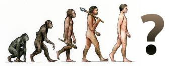 Качается ли картина эволюции человека?