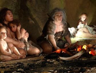 Социальные структуры предков человека