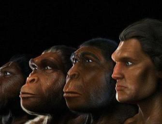 Наши первобытные предки: что мы можем сказать об их коммуникативных возможностях?