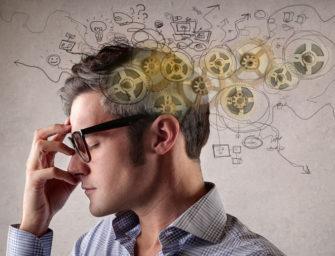 Мозг человека и эволюционная психология