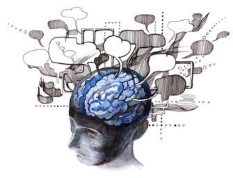 Психогенетика и мозг