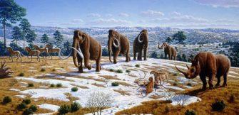 Плиоцен-плейстоцен-голоцен