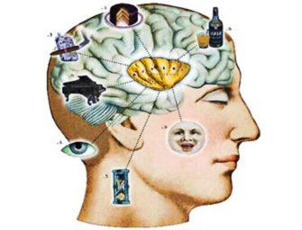 Мозг и гипоталамус: биологические потребности и нейроэндокринная регуляция.