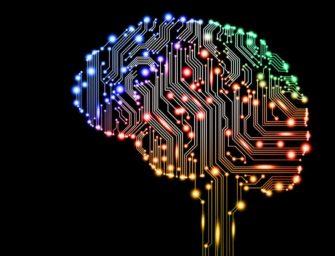 Мозг: сенсорные функции