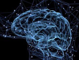 Мозг: двигательные центры