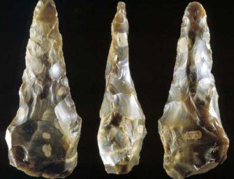 Homo heidelbergensis, пре-палеоантропы: торжество разума