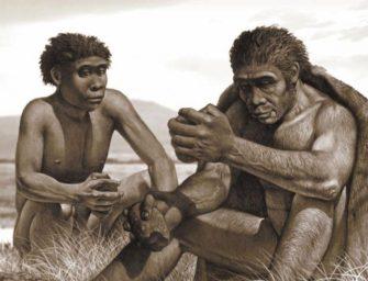 Ранние Homo: загадочный миллион и неумелые руки человека умелого