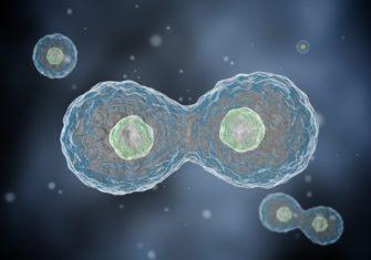 Наноскопия или как увидеть одну молекулу