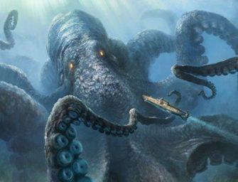 Моллюски. Двустворчатые и Головоногие