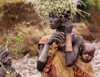 Морфология африканских языков: сколько родов в африканских языках?