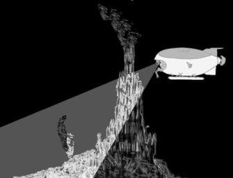 Гидротермальные «оазисы» глубин океана («чёрные курильщики»)