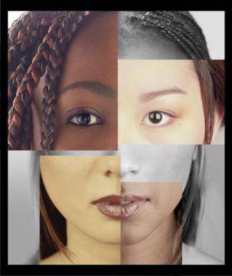 Курс «Расоведение»