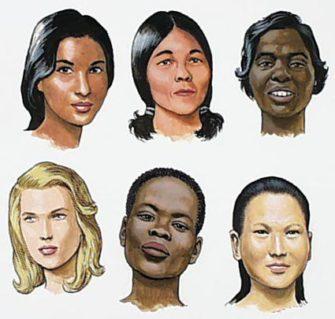 Какие признаки отличают одну расу от другой?