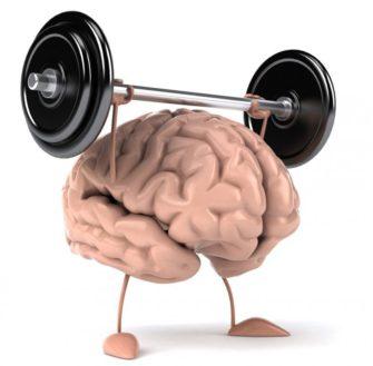 Мозги на «прокачку»