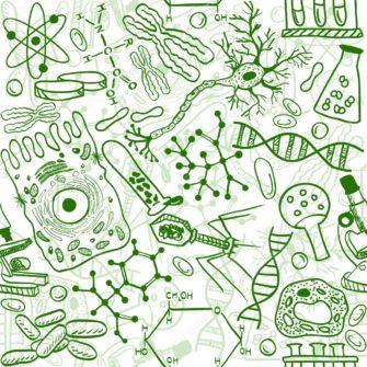 Курс «Общая биология»