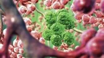 Молекулярные биомаркеры в медицине