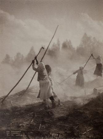 История деградации современного живого покрова Северной Евразии в голоцене