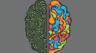 Курс В.А. Дубынина «Химия мозга»
