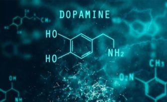 Дофамин (Химия мозга)