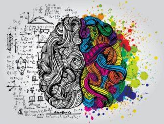 Опиоиды, кофеин, алкоголь и прочее (Химия мозга)