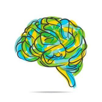 Цикл лекций «Эволюция познания» совместно с ВШЭ
