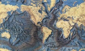 Биогенный рельеф (Природа Земли)