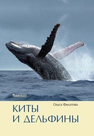 Лекция«Что мы не знаем о китах и дельфинах?»