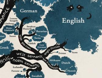 Курс«Германские языки: история и современность»