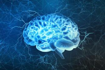 Мозг: итоги 2018 года (Вход свободный)