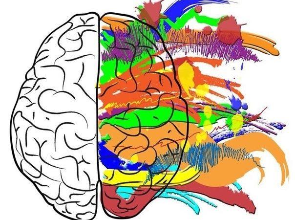 Мозг, потребности, эмоции (Мозг и потребности)