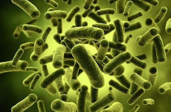 Охотники за микробами: нобелевские герои и неудачники  (Супермикробы)