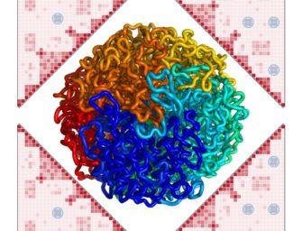Трёхмерная геномика (Ульянов Сергей Владимирович)