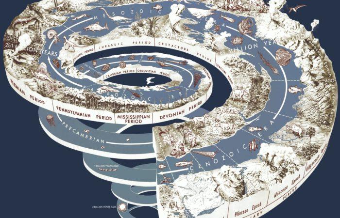 Курс «От кембрийского взрыва до наших дней» (Ярослав Попов)